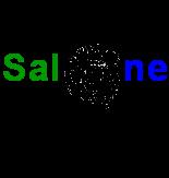 salone Talk